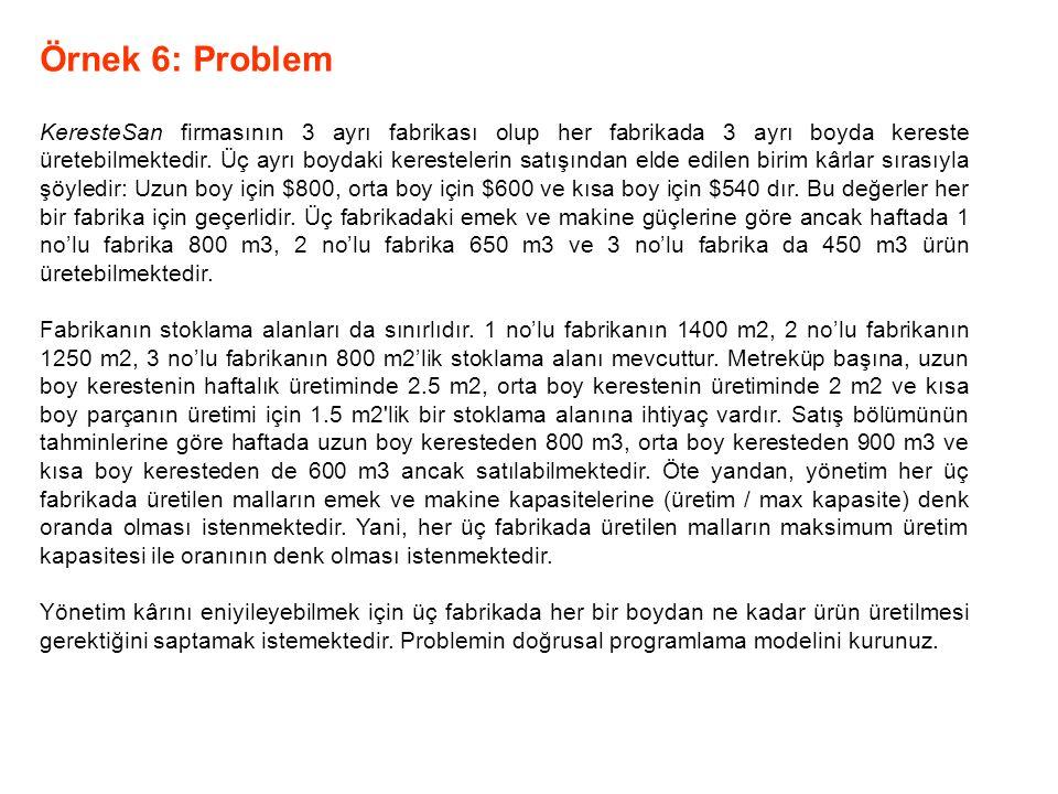 Örnek 6: Problem
