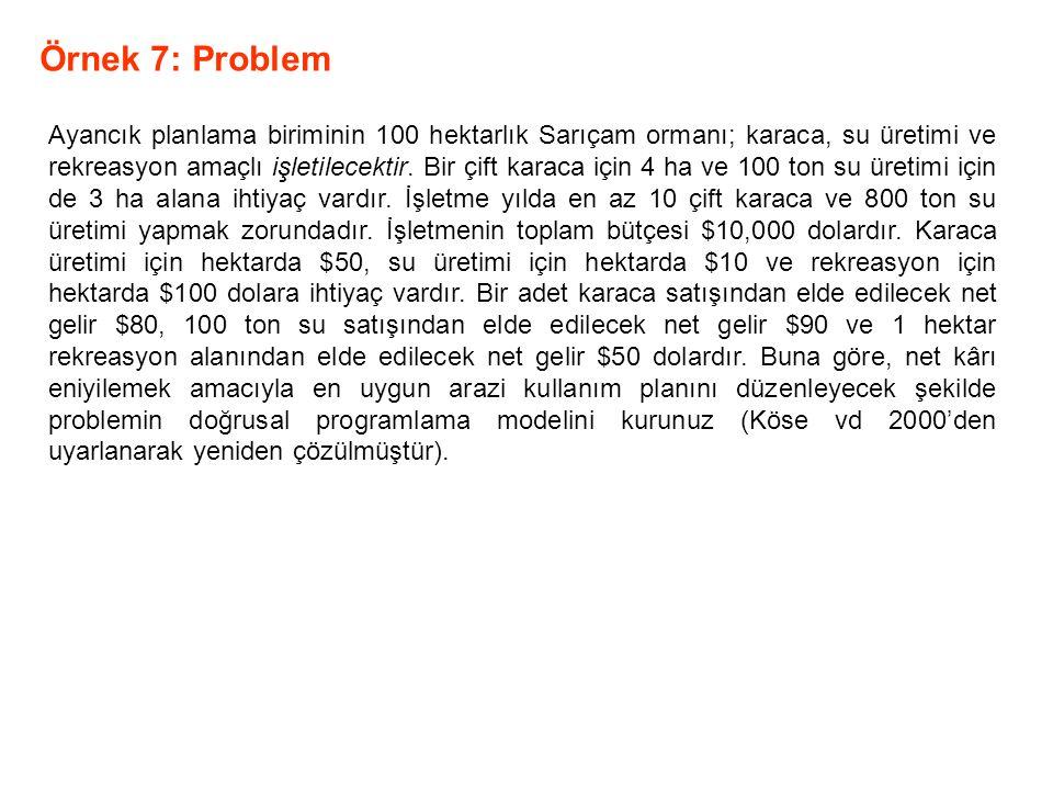 Örnek 7: Problem