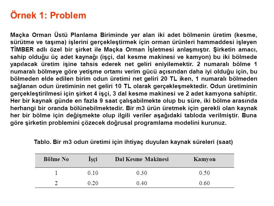 Örnek 1: Problem