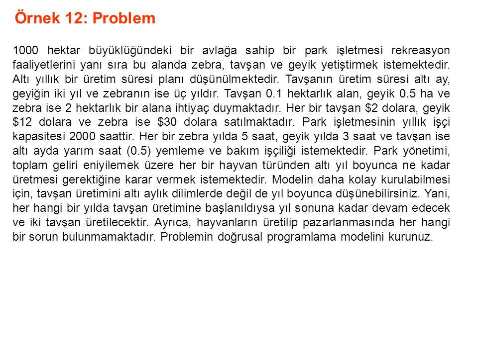 Örnek 12: Problem