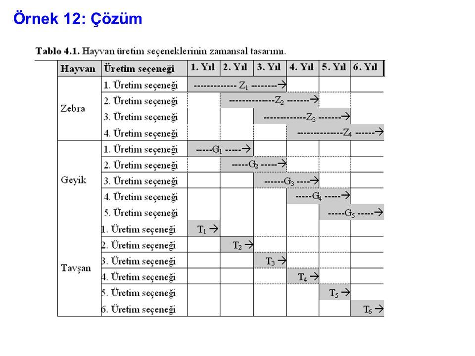 Örnek 12: Çözüm