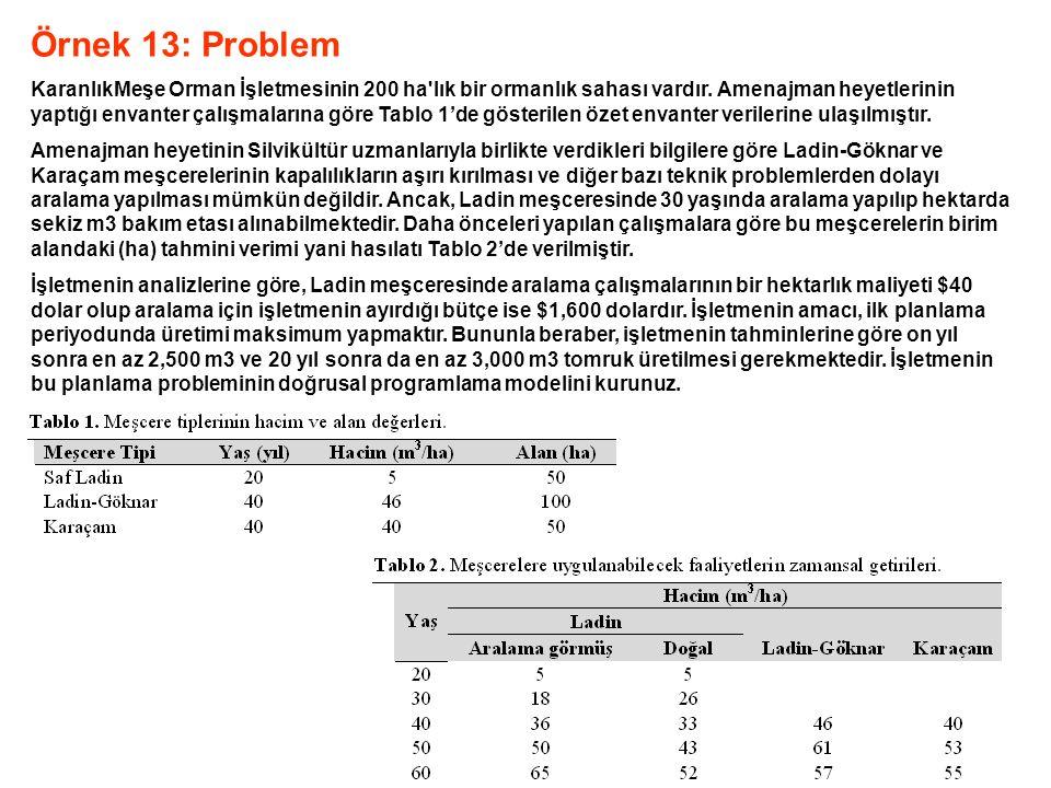 Örnek 13: Problem