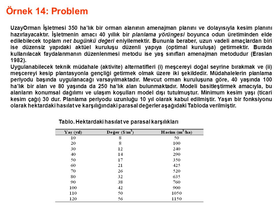 Örnek 14: Problem