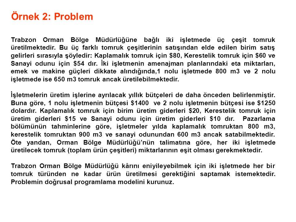 Örnek 2: Problem