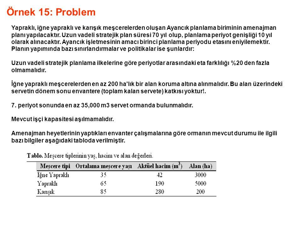 Örnek 15: Problem