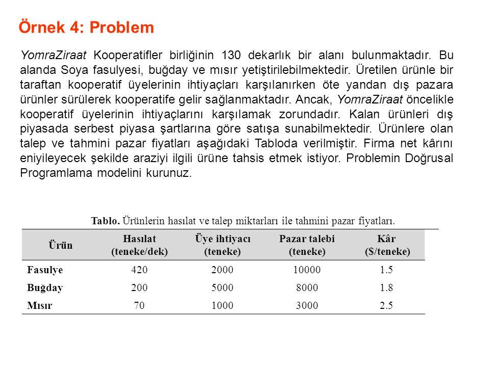 Örnek 4: Problem