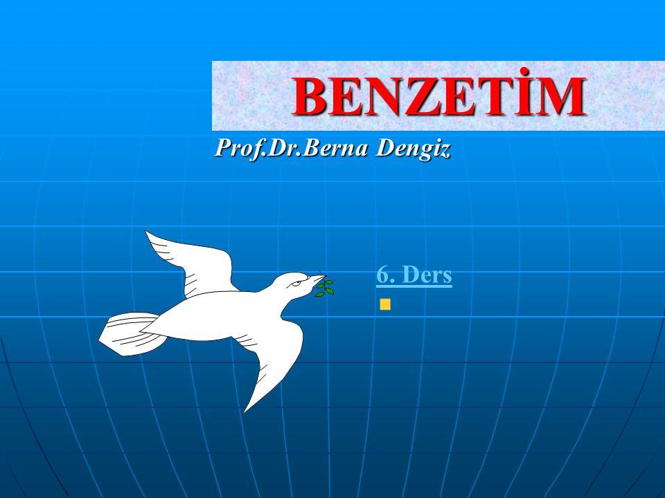 BENZETİM Prof.Dr.Berna Dengiz 6. Ders