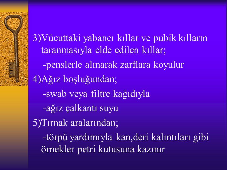 3)Vücuttaki yabancı kıllar ve pubik kılların taranmasıyla elde edilen kıllar;