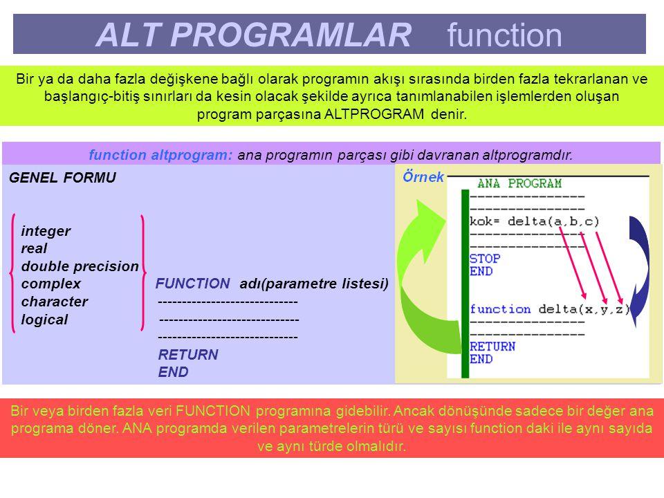 ALT PROGRAMLAR function