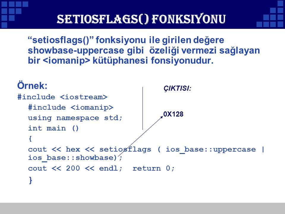 Setiosflags() Fonksiyonu