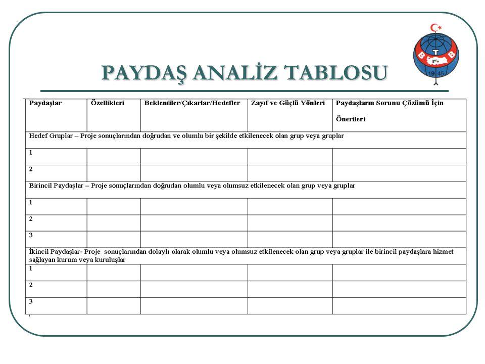 PAYDAŞ ANALİZ TABLOSU