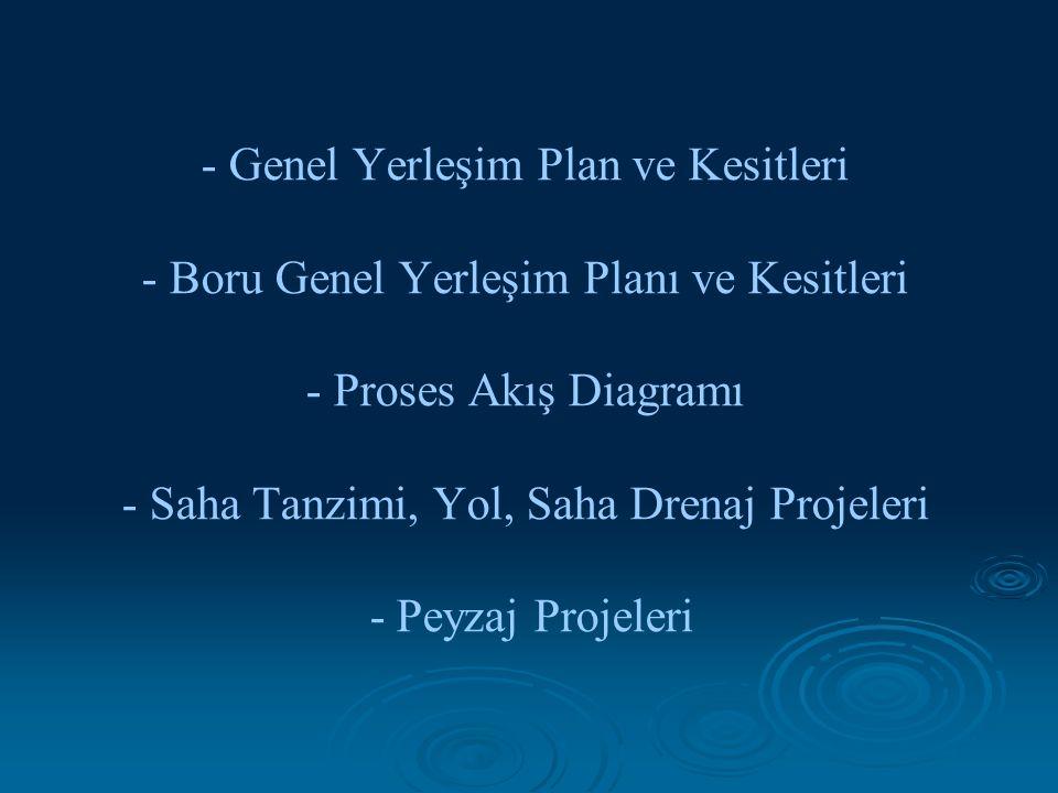 - Genel Yerleşim Plan ve Kesitleri - Boru Genel Yerleşim Planı ve Kesitleri - Proses Akış Diagramı - Saha Tanzimi, Yol, Saha Drenaj Projeleri - Peyzaj Projeleri