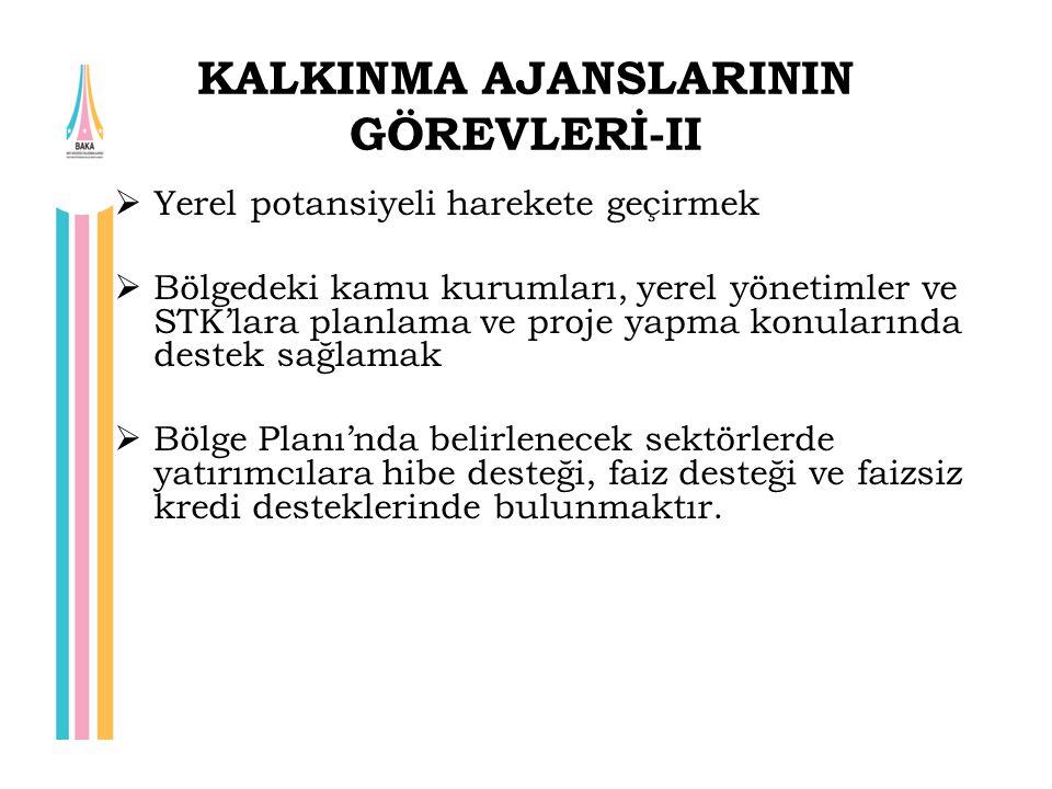 KALKINMA AJANSLARININ GÖREVLERİ-II