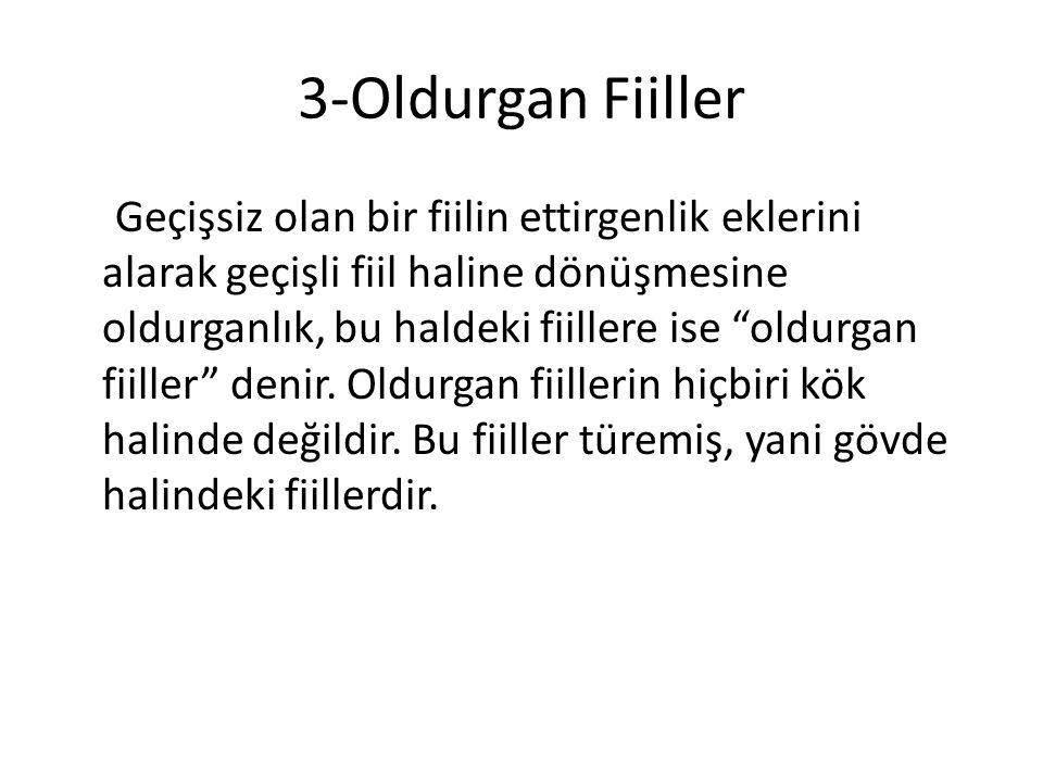 3-Oldurgan Fiiller