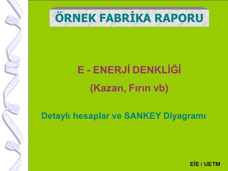 Detaylı hesaplar ve SANKEY Diyagramı