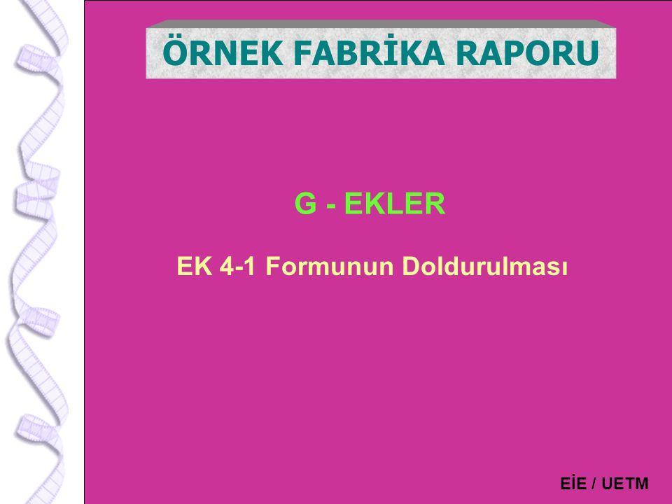 EK 4-1 Formunun Doldurulması
