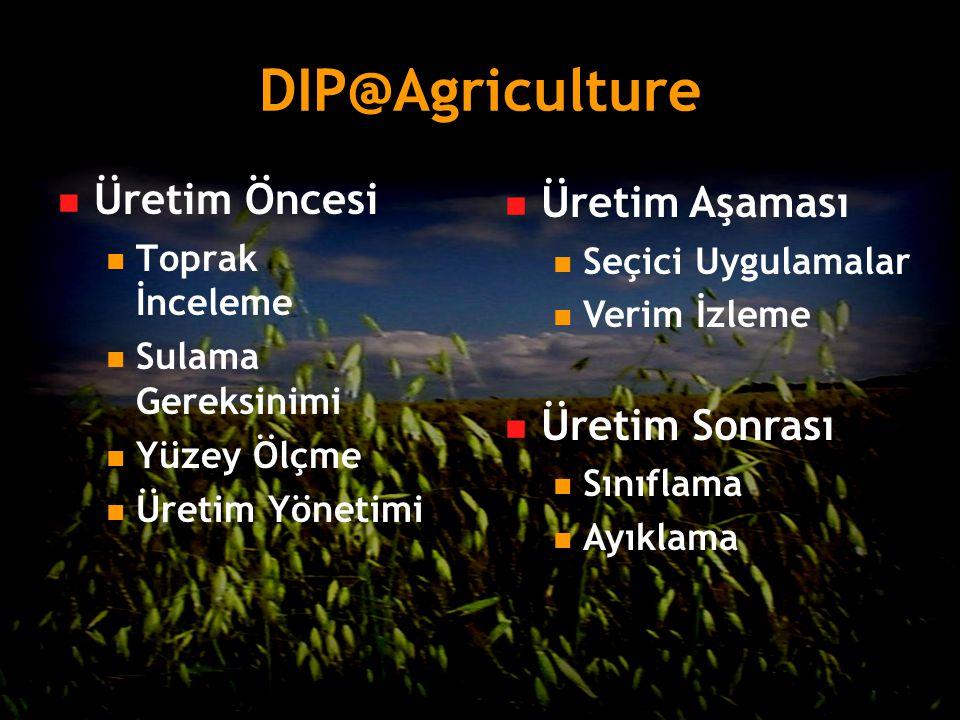 DIP@Agriculture Üretim Öncesi Üretim Aşaması Üretim Sonrası