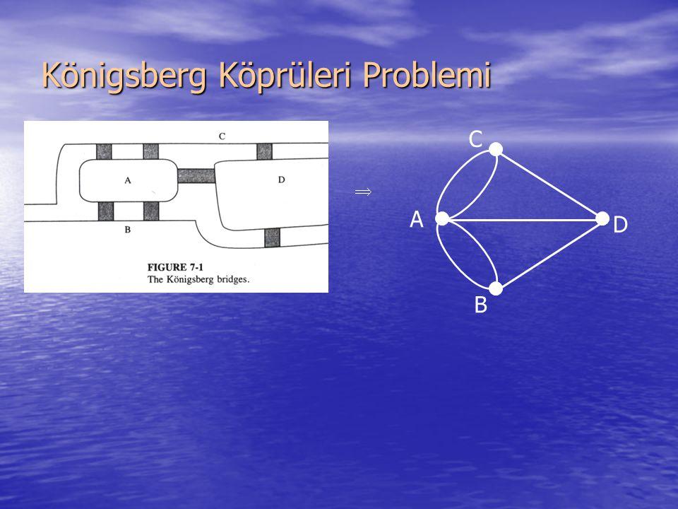Königsberg Köprüleri Problemi