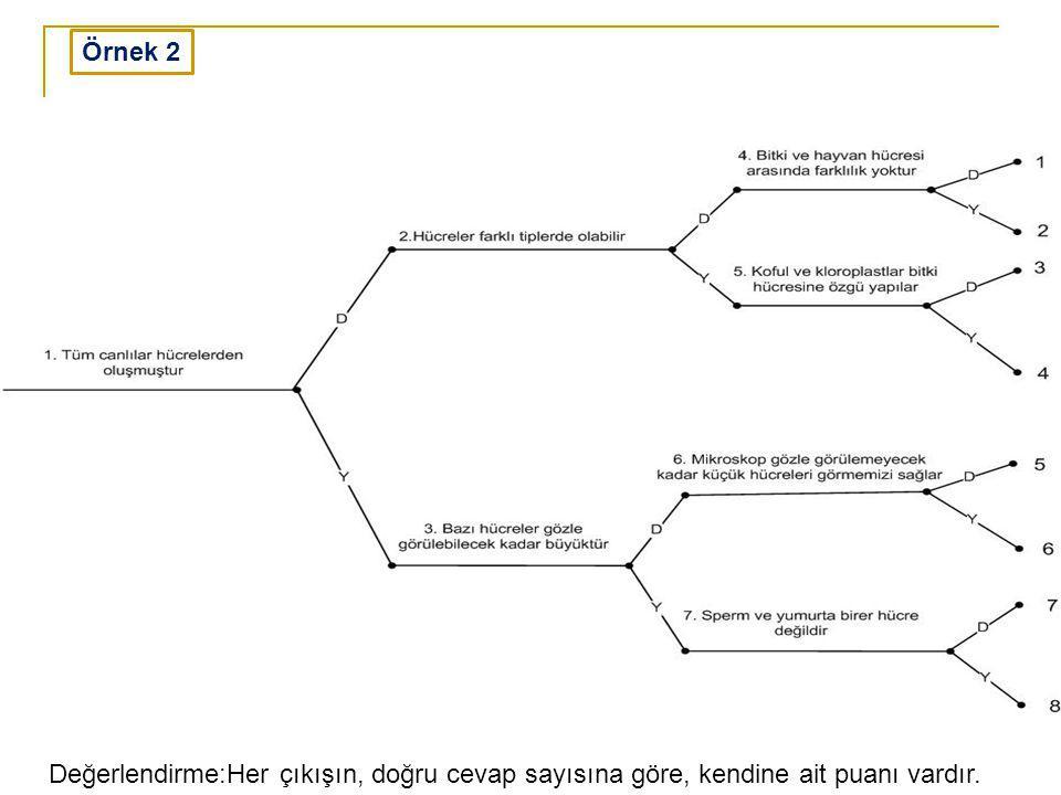 Örnek 2 Değerlendirme:Her çıkışın, doğru cevap sayısına göre, kendine ait puanı vardır.