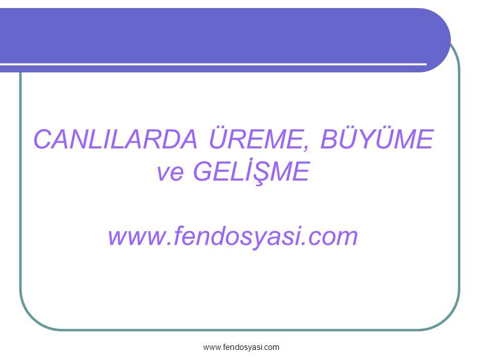 CANLILARDA ÜREME, BÜYÜME ve GELİŞME www.fendosyasi.com