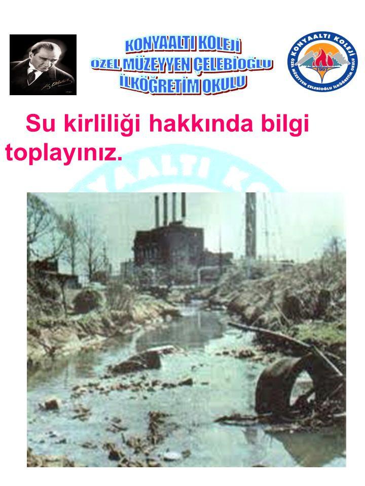 Su kirliliği hakkında bilgi toplayınız.