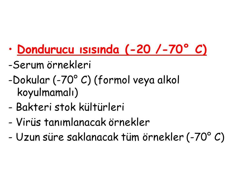 Dondurucu ısısında (-20 /-70° C)