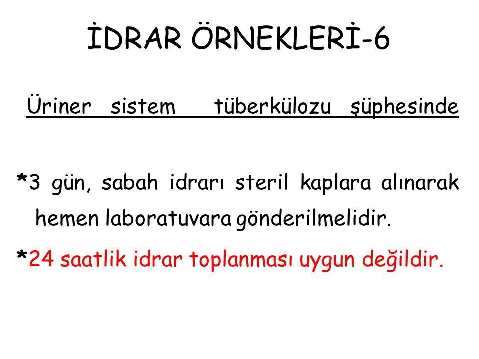 İDRAR ÖRNEKLERİ-6
