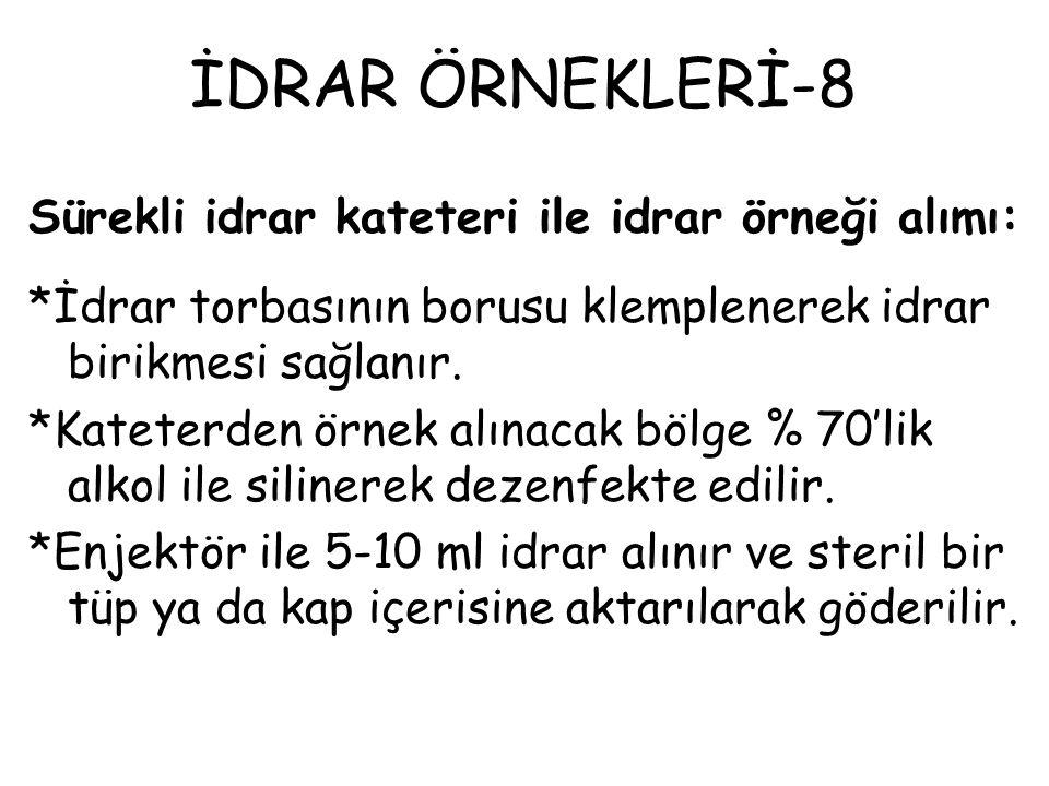 İDRAR ÖRNEKLERİ-8