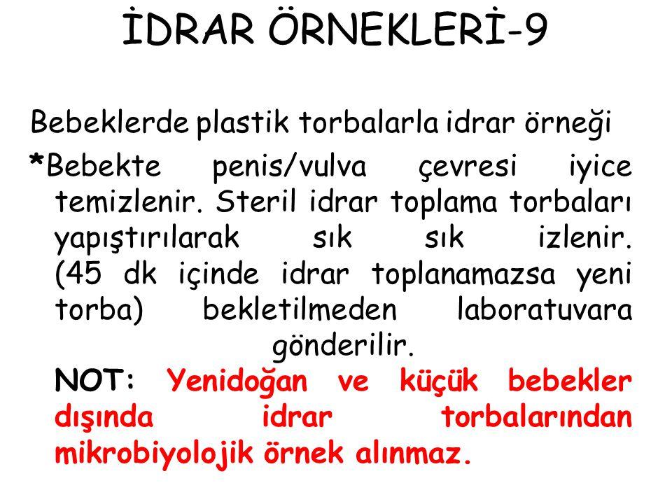İDRAR ÖRNEKLERİ-9