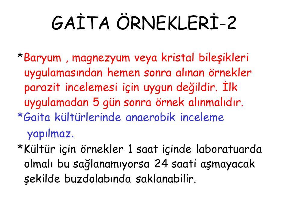 GAİTA ÖRNEKLERİ-2
