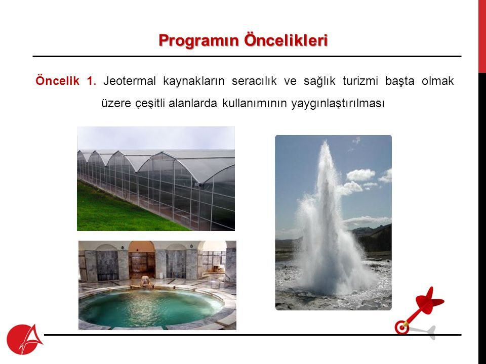 Programın Öncelikleri