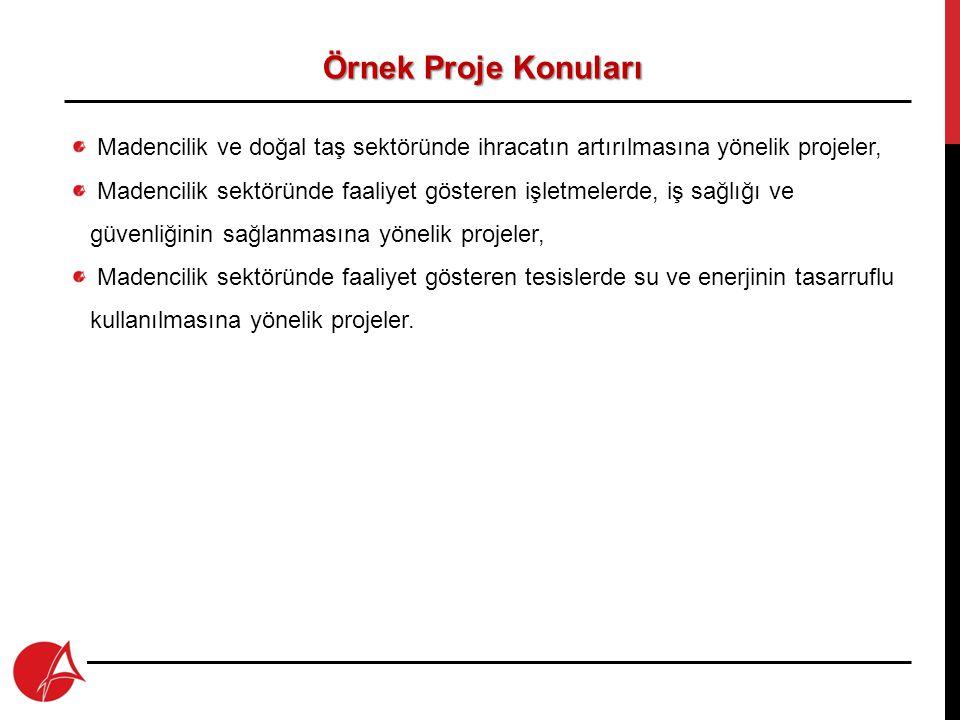 Örnek Proje Konuları Madencilik ve doğal taş sektöründe ihracatın artırılmasına yönelik projeler,