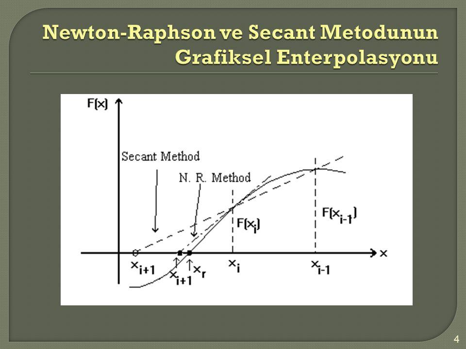 Newton-Raphson ve Secant Metodunun Grafiksel Enterpolasyonu