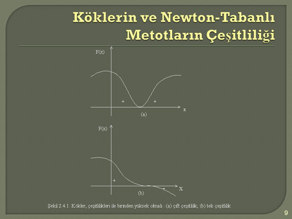 Köklerin ve Newton-Tabanlı Metotların Çeşitliliği