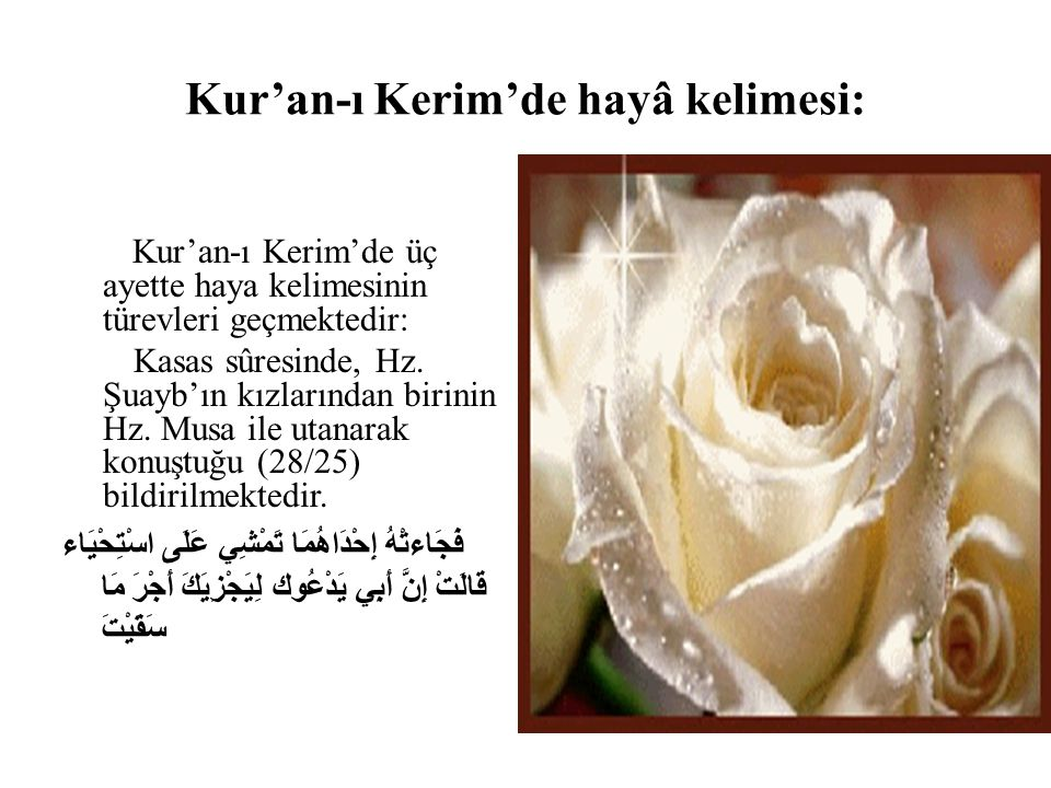 Kur'an-ı Kerim'de hayâ kelimesi: