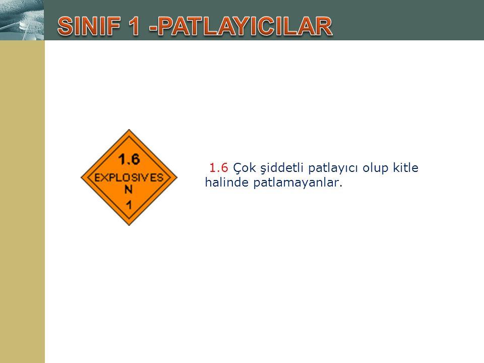 SINIF 1 -PATLAYICILAR 1.6 Çok şiddetli patlayıcı olup kitle halinde patlamayanlar.