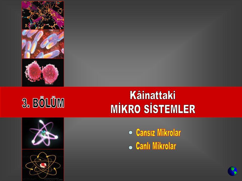 Kâinattaki MİKRO SİSTEMLER 3. BÖLÜM Cansız Mikrolar Canlı Mikrolar
