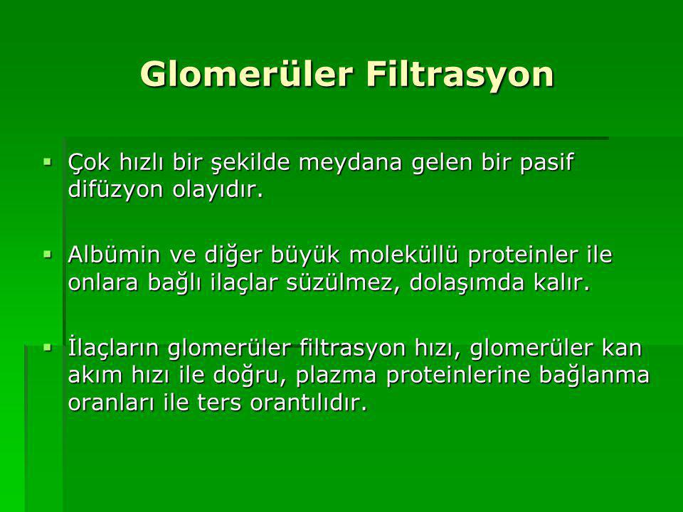 Glomerüler Filtrasyon