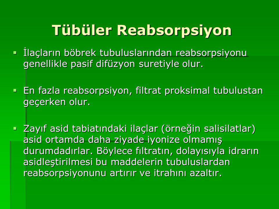 Tübüler Reabsorpsiyon