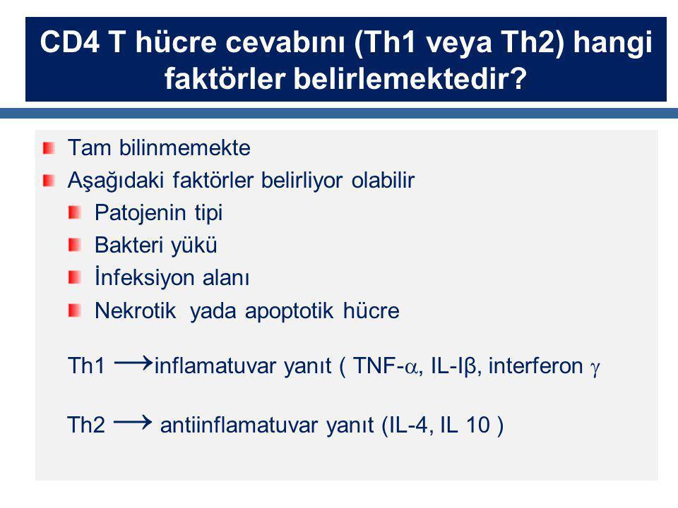 CD4 T hücre cevabını (Th1 veya Th2) hangi faktörler belirlemektedir