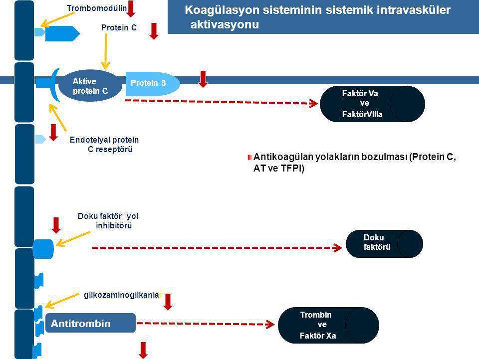 Koagülasyon sisteminin sistemik intravasküler aktivasyonu
