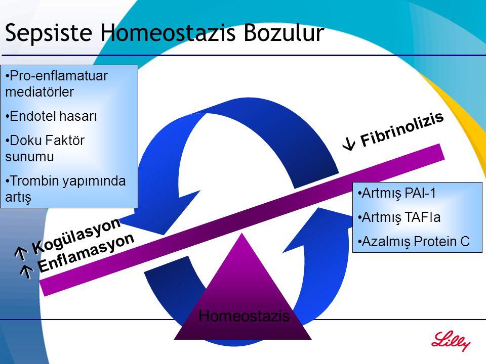 Sepsiste Homeostazis Bozulur