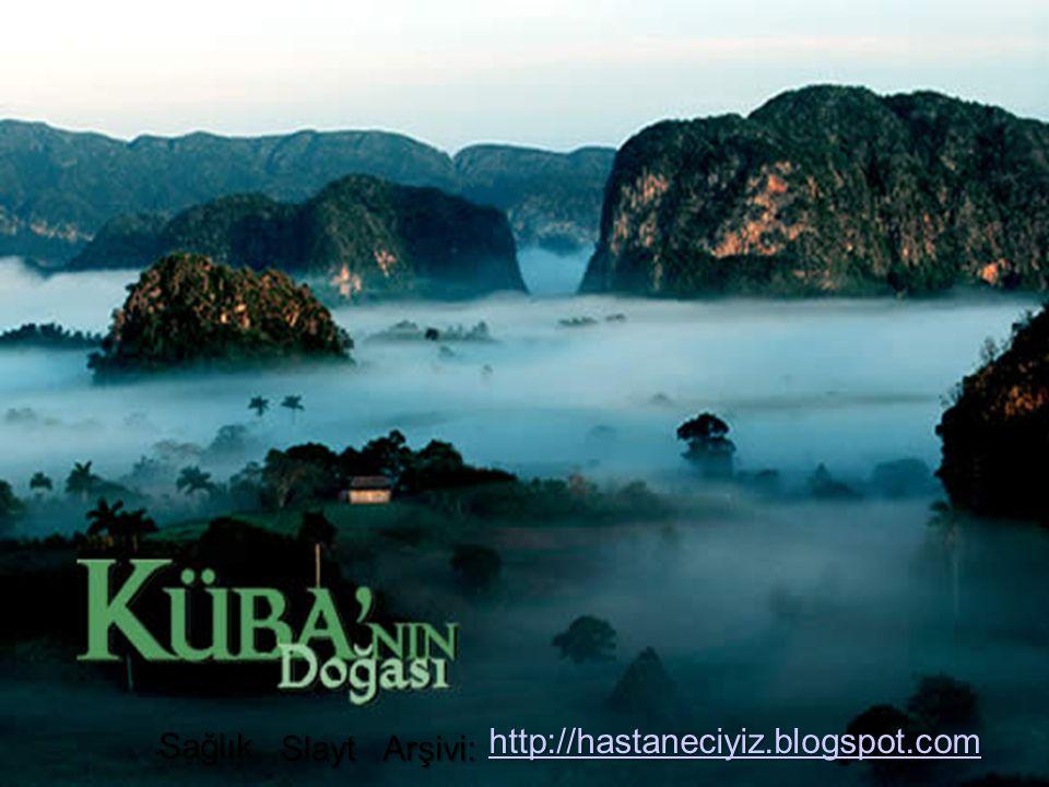 Sağlık http://hastaneciyiz.blogspot.com Slayt Arşivi: