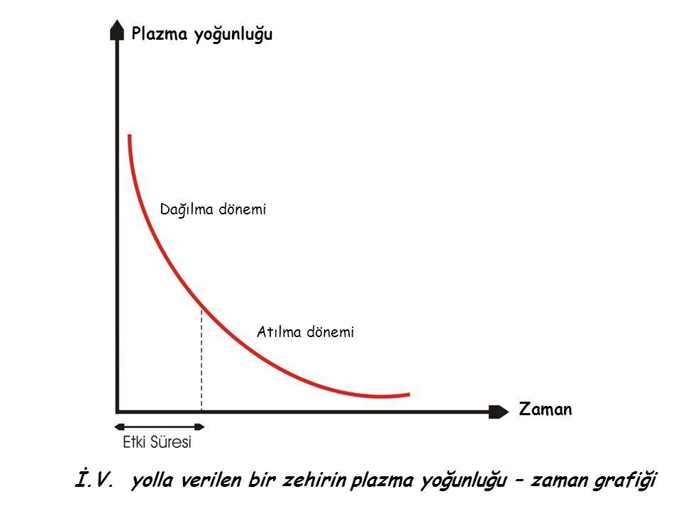 İ.V. yolla verilen bir zehirin plazma yoğunluğu – zaman grafiği