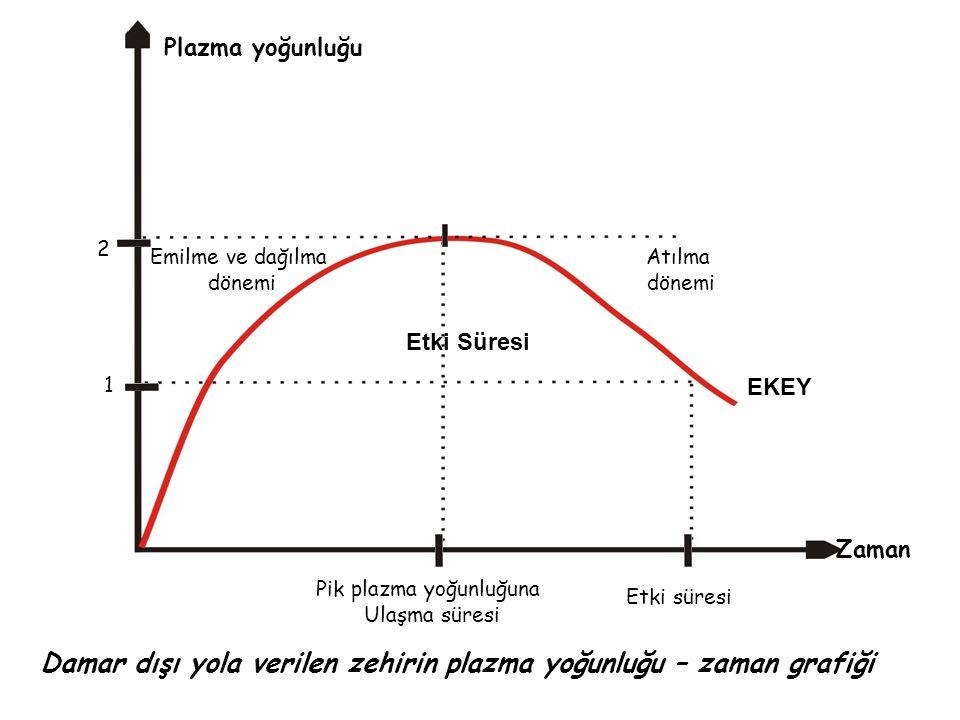 Damar dışı yola verilen zehirin plazma yoğunluğu – zaman grafiği
