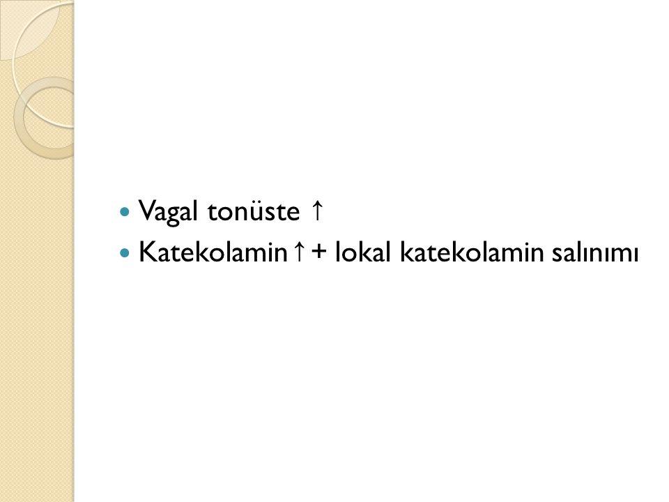 Vagal tonüste ↑ Katekolamin↑+ lokal katekolamin salınımı