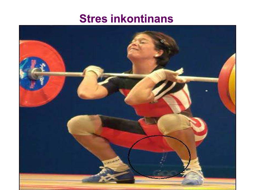 Stres inkontinans