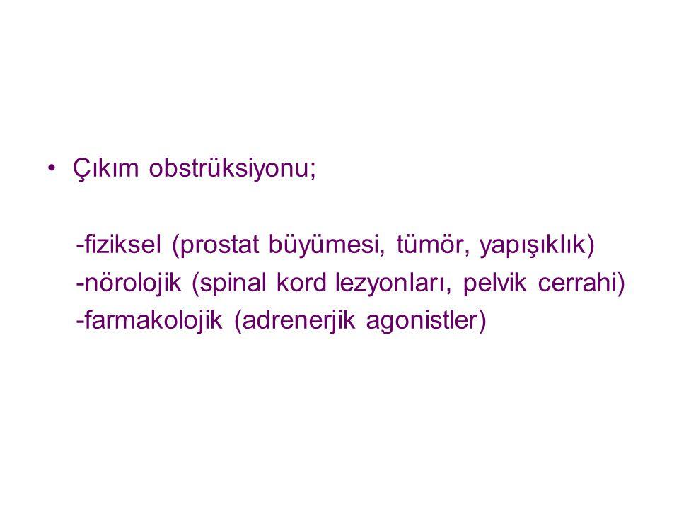 Çıkım obstrüksiyonu; -fiziksel (prostat büyümesi, tümör, yapışıklık) -nörolojik (spinal kord lezyonları, pelvik cerrahi)