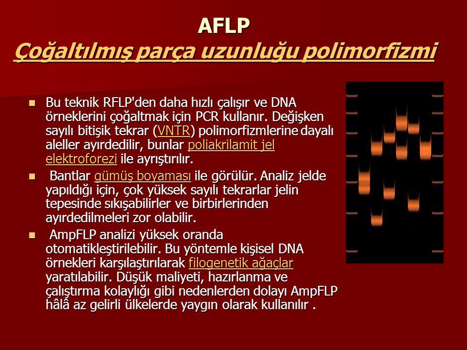AFLP Çoğaltılmış parça uzunluğu polimorfizmi