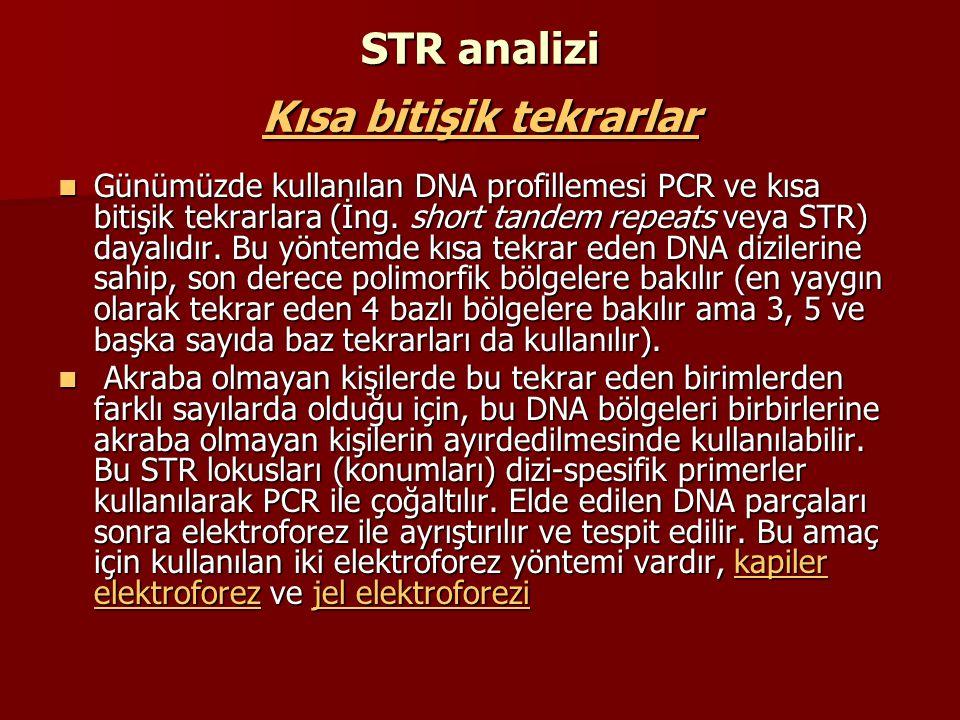 STR analizi Kısa bitişik tekrarlar